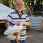Yumurtadan günde 1500 lira kazanıyor