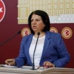 HDP'li vekil: PKK'ya gönül verenlerin oylarıyla o koltuklardasınız!