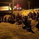 Ayvalık'ta 99 göçmen yakalandı