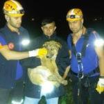 15 Metrelik su kuyusuna düşen köpeği AFAD kurtardı