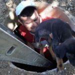 Rögara düşen köpek çocukların dikkati sayesinde kurtarıldı