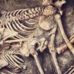 Eskişehir'de 5 bin yıllık iskeletler bulundu