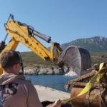 İzmir'de şaşkına çeviren olay! Balıkçı ağına takıldı!