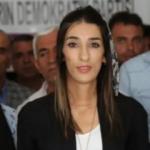 HDP Mardin il başkanı gözaltına alındı