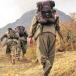 PKK birbirine düştü: Kolaysa gel kendin yap!