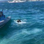 Beykoz'da akıntıya kapılan çocuk kayboldu