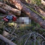 4 gündür kayıptı ağacın altında ölü bulundu!