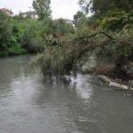 Bartın Irmağı'nda korkutan görüntü!