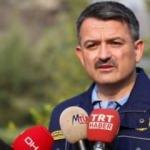 Hükümetten İzmir'deki yangın hakkında açıklama