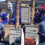 Ucuza satmamak için kasa kasa domatesi çöpe döktüler