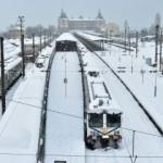 Güneşte dikkat çeken hareketsizlik: Kış İstanbul'da sert geçecek