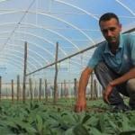 """Gençler """"Genç Çiftçi Projesi""""yle köyde kaldı"""