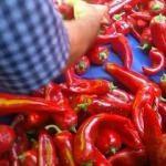 Şanlıurfa'da bu yıl kırmızıbiber az, talep çok