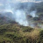 Muğla'daki büyük yangın kontrol altına alındı