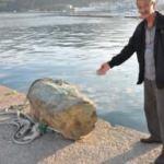 Balıkçıların ağına takıldı! 'Bu dünyaya ait değil'