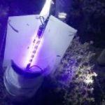 Gümüşhane'de kelebek yakalayan yabancı uyruklu 2 kişiye para cezası