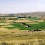 2/B ve tarım arazisi satışında süre uzatıldı