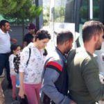 Datça'da 23 kaçak göçmen yakalandı