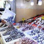 Balık stokları için kritik uyarı!