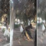 Çocuk parkından sivilleri katletmişlerdi... Hain plan deşifre oldu