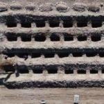 Burası Erzurum! Tam 800 mezar kazıldı