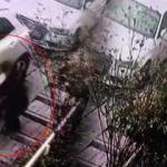 Hırsız ev sahibine yakalanınca camdan atladı!