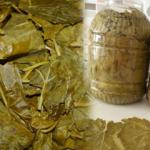Evde yaprak salamurası nasıl yapılır?