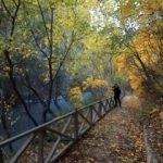Malatya Tohma Kanyonu sonbahar renkleriyle göz kamaştırıyor
