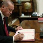 Erdoğan imzaladı, 6 üniversite bünyesinde yeni fakülte kuruldu