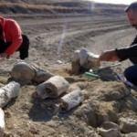 Kayseri'de bulundu! 7,5 milyon yıllık