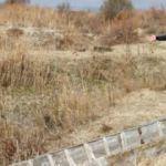 Afyonkarahisar'da korkutan görüntü! Günden güne azalıyor