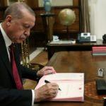Cumhurbaşkanı Erdoğan'ın vetosu 'hastalık' zincirini durduracak