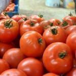 Dünyada domates üretiminde üçüncü sıradayız