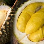 Durian meyvesinin faydaları nelerdir? Durian hangi hastalıklara iyi gelir? Durian nasıl tüketilir?
