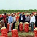 Hindistan'daki kriz Türk üreticilere fırsat oldu