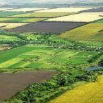 Bakan açıkladı: 16 bin kişiyi toprak sahibi yaptık