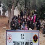 Çanakkale'de 201 göçmen yakalandı