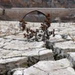 Torul baraj gölünde korkutan görüntü!