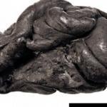 Sakızdaki 5 bin 700 yıllık genetik şifre ortaya çıktı!