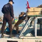 Uyuşturucu baronlarına büyük darbe! 475 kişi yakalandı