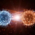 Koronavirüs internete sıçradı