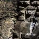 Define avcıları bin 600 yıllık tarihi yok etti