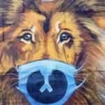 Koronavirüs, Ukrayna'da sanatı da etkiledi