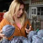 Koronavirüs vurdu, sebze ve meyvelerin fiyatı yüzde 90 düştü