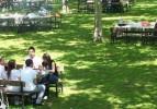 Sivas'ta piknik alanlarında iftar