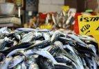 Balık sezonu başladı: İşte tezgahtan ilk fiyatlar