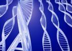 Behçet hastalığı ile bağlantılı 4 gen bulundu