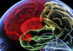 Beyin sırları için araştırma merkezi kuruluyor