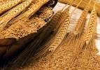 Durum buğdayında kriz bakliyatçıları korkutuyor