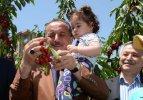 İstanbul'un orta yerinde dalından kiraz yediler